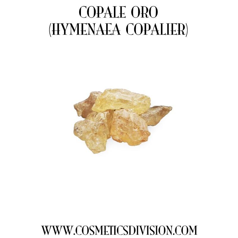 COPALE ORO DEL MADAGASCAR (HYMENAEA COPALIER) - WWW.COSMETICSDIVISION.COM - PREZZO
