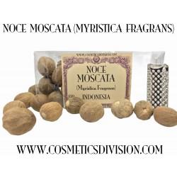 NOCE MOSCATA (MYRISTICA FRAGRANS) - AFRODISIACO - LA VIA DELLA SETA - WWW.COSMETICSDIVISION.COM - VENEZIA - PREZZO