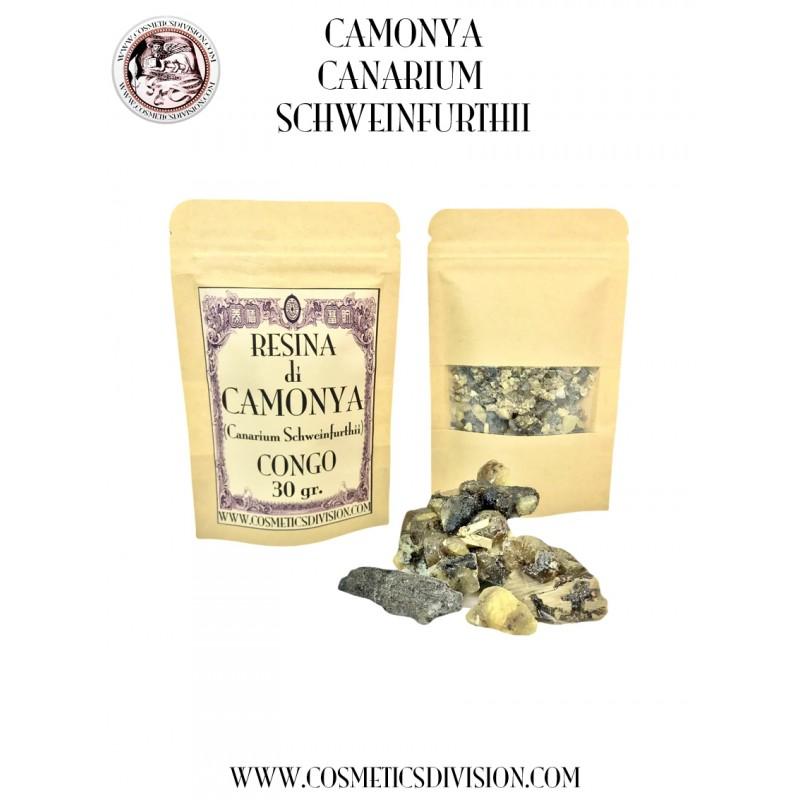 CAMONYA DEL CONGO (CANARIUM SCHWEINFURTHII) - RESINA - INCENSO - PROFUMO DOLCE E BALSAMICO - WWW.COSMETICSDIVISION.COM - PREZZO